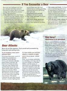 Bear Country Parks Canada leaflet